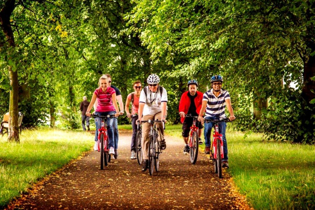kampaniya druzej kataetsya na velosipede