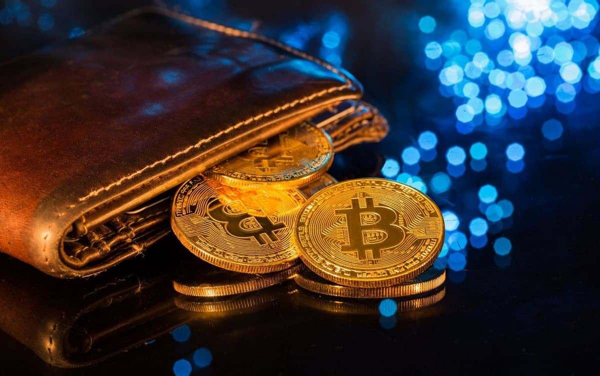 Существует несколько видов кошельков биткоин