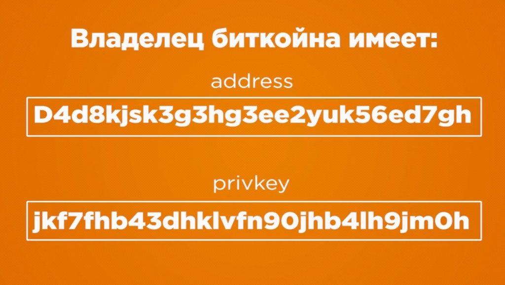 vladelec bitkoinov imeet bitkoin adres i klyuch